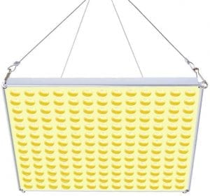 Roleadro LED Pflanzenlampe